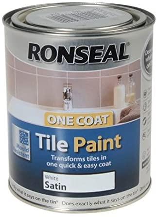 Best Paint For Tiles