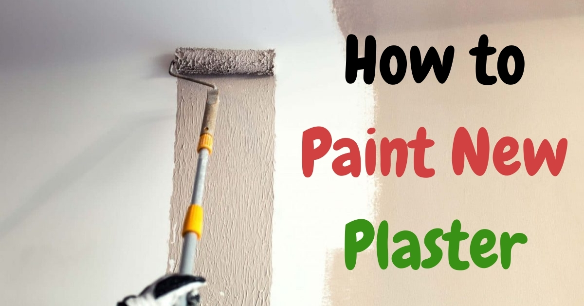 How to Paint New Plaster – Tips and Tricks You need To Know
