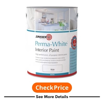Best Paint For Outer Walls